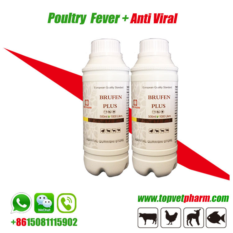 Anti Viral Fever Oral Solution