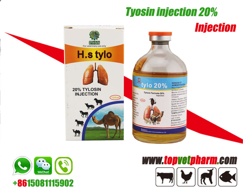10% 20% Tylosin Injection