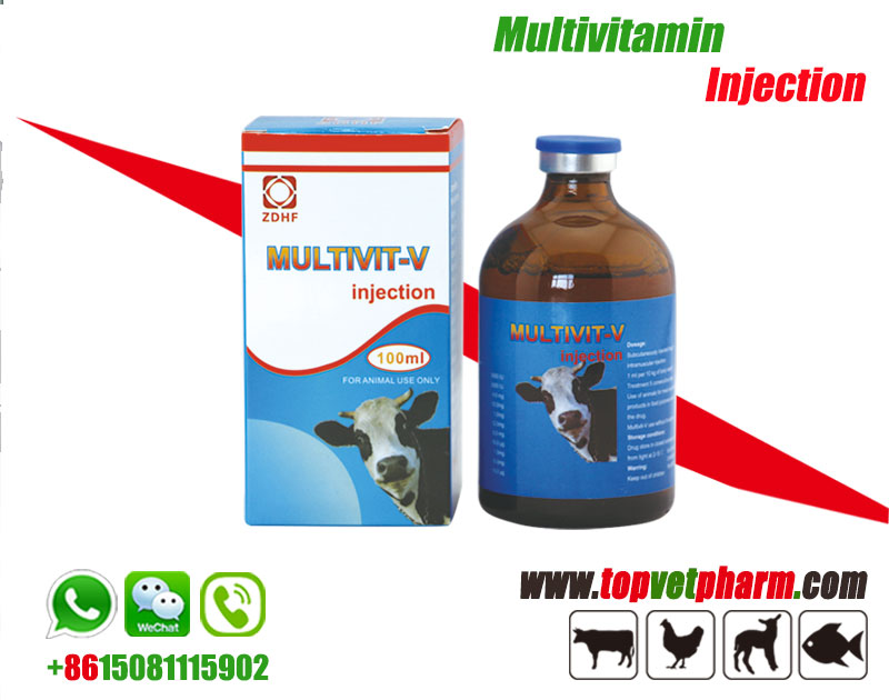 Livestock Multivitamin Injection