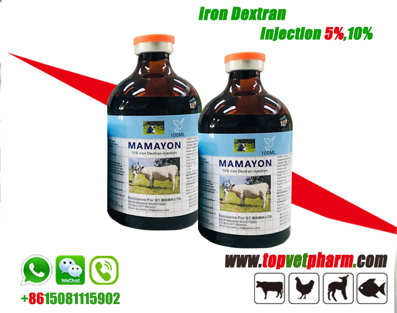 10 Iron Dextran Injectable Solution