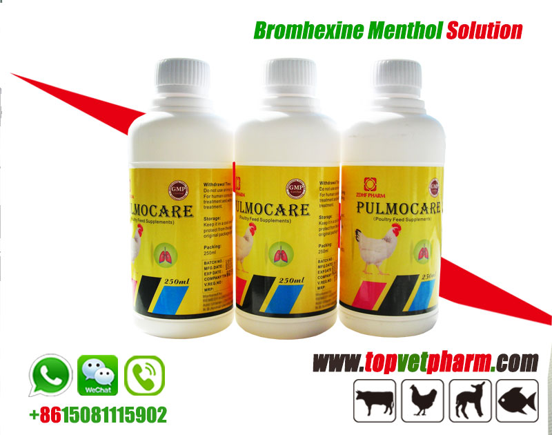 Menthol Bromhexine Hcl Oral Solution