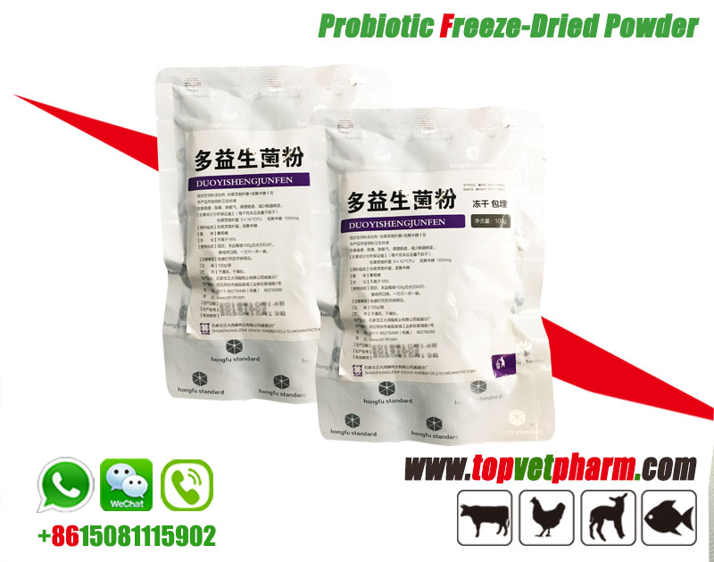 Poultry Probiotics Freeze Dried Powder