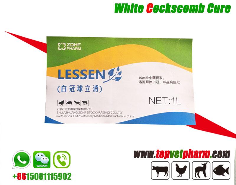 Chicken White Cockscomb Cure