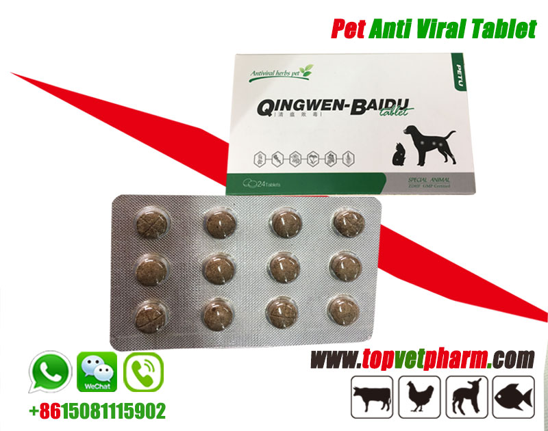 Pet Herbal Antiviral Tablet