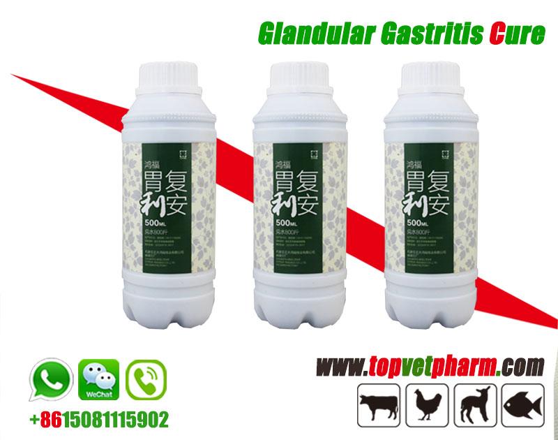 Glandular Gastritis Cure