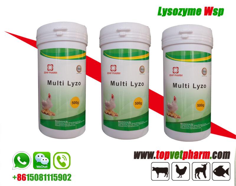Multi -Lyzo