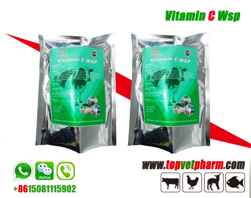 Poultry Vitamin C Water Soluble Powder