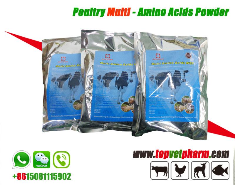 Multivitamin Amino Acids Water Soluble Powder