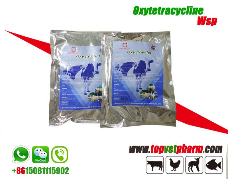 Oxytetracycline Complex Powder