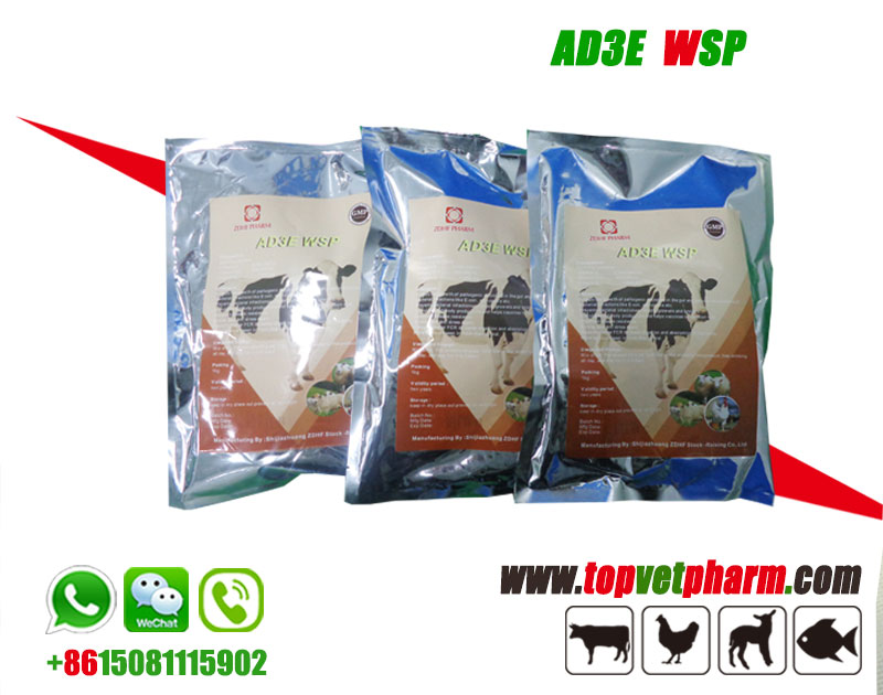 Ad3e Multivitamin Powder