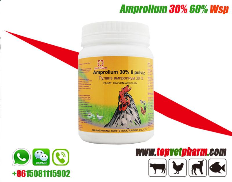 Amprolium Powder 20%