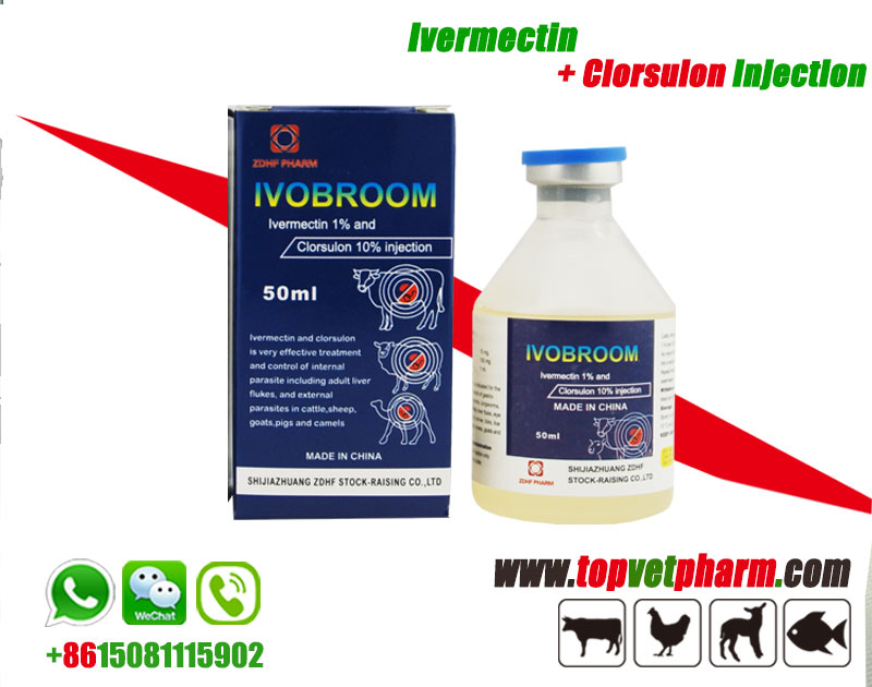 Ivermectin+Clorsulon Injection