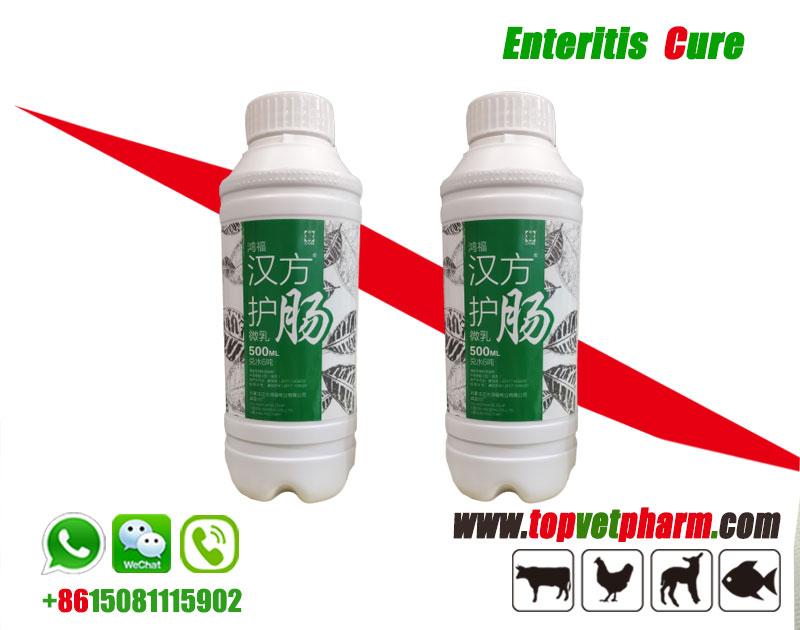 Enteritis Cure