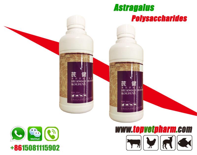 Astragalus Polysaccharide Solution /  Powder