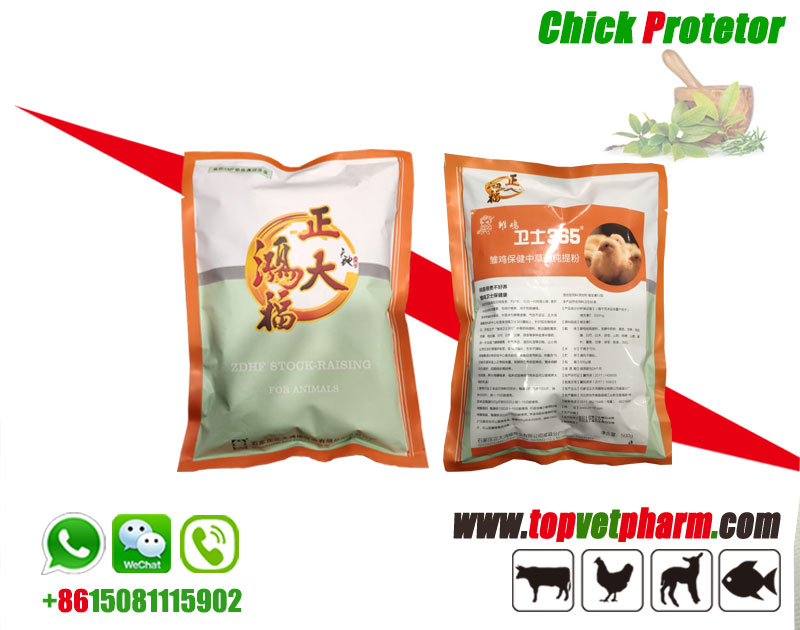 Chick Protector