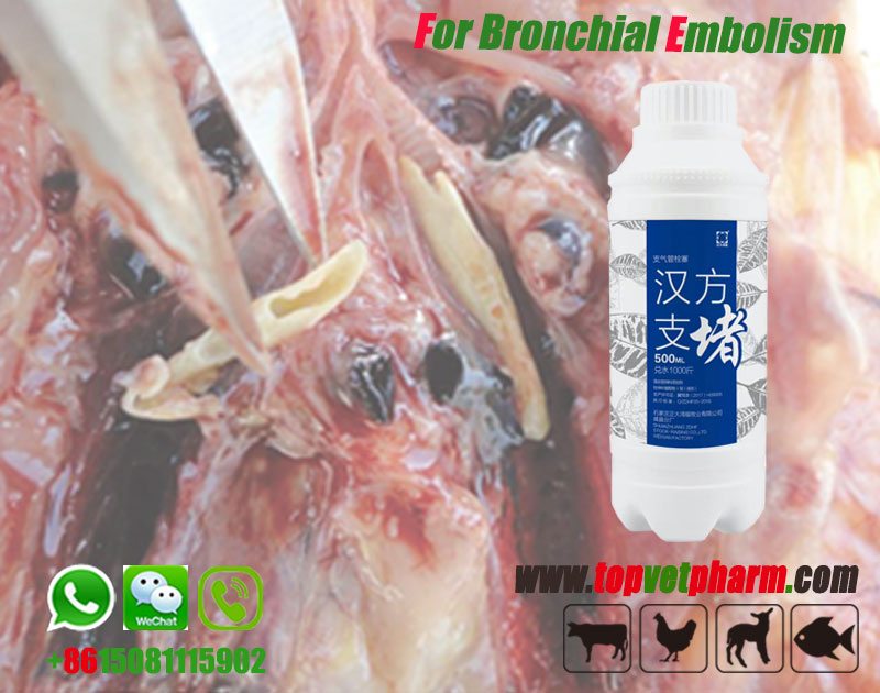 Chicken Bronchial Embolism Oral Solution