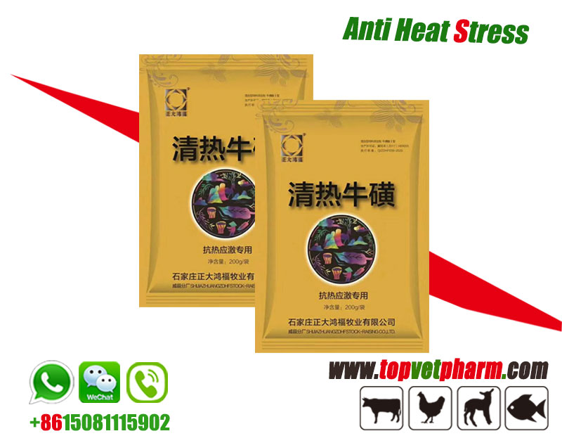 Poultry Anti Heat Stress Powder