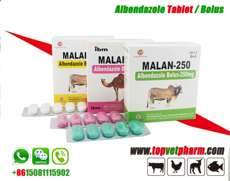 Anti Parasite Albendazole Bolus 300mg  2500mg 150mg