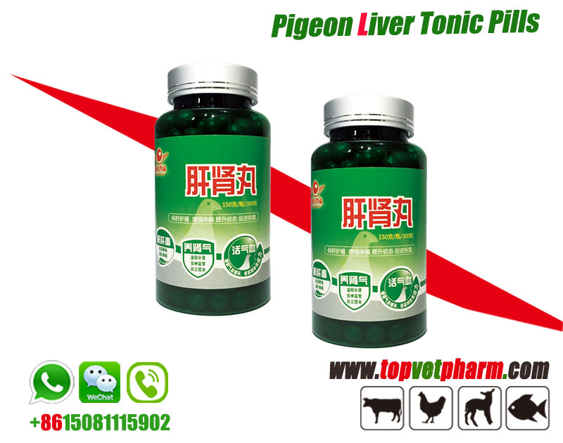 Racing Pigeon Liver Tonic Pills