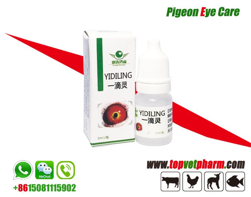Pigeon Eye Drop For Weep