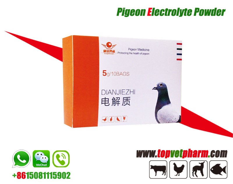 Pigeon Electrolyte Powder