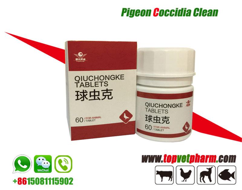 Pigeon Coccidia Clean