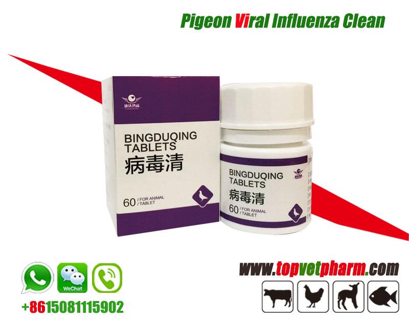 Pigeon Viral Influenza Clean