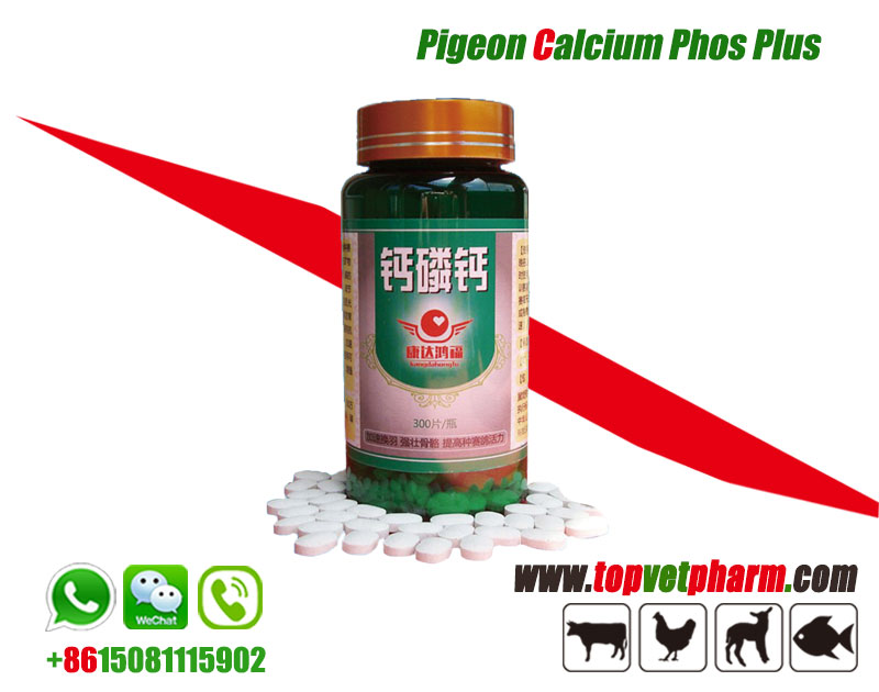 Pigeon Calcium Phosphorus Supplements