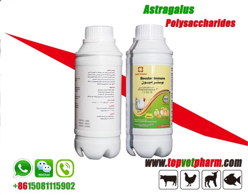 Astragalus Polysaccharide  Oral Solution