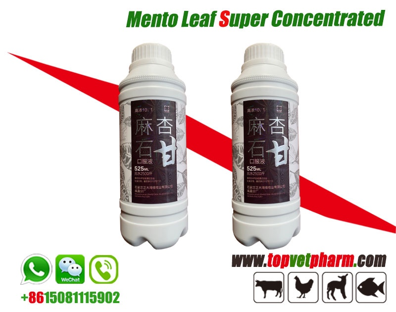 Mento Leaf Super Concentrated