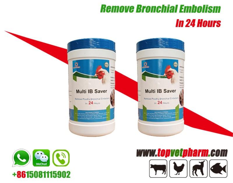 Multi IB Saver